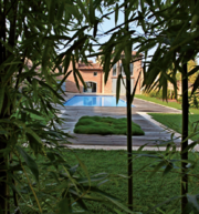 Декоративные растения из Италии ,  грамотный проект сада .